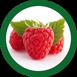 Raspberries_edited.png