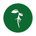 Roots_Icon_New.png