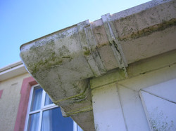 Algae-on-gutters