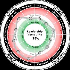 leadership versatility, leadership, leadership development