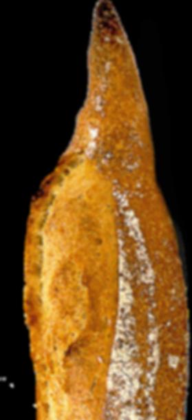 Farine Guiard Fleurysette