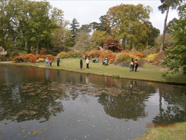 Exbury Gardens 2_edited