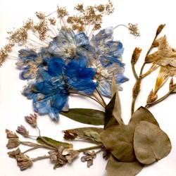 Creative flower design