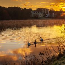 Coleraine sunrise