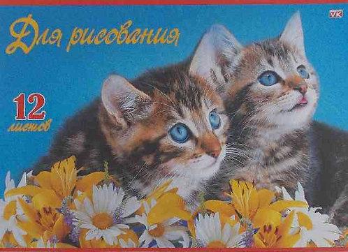 Альбом для рис.12л. ХАТ Верные друзья 03377