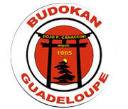 Budokan - judo, karate, aikido, musculat