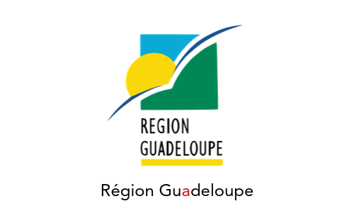 Aiguillage_-_nos_clients_-_Région_Guadel