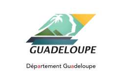 Aiguillage_-_nos_clients_-_Région_Guadel