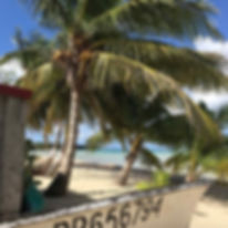 Antilles Sail Chez Henri.jpg