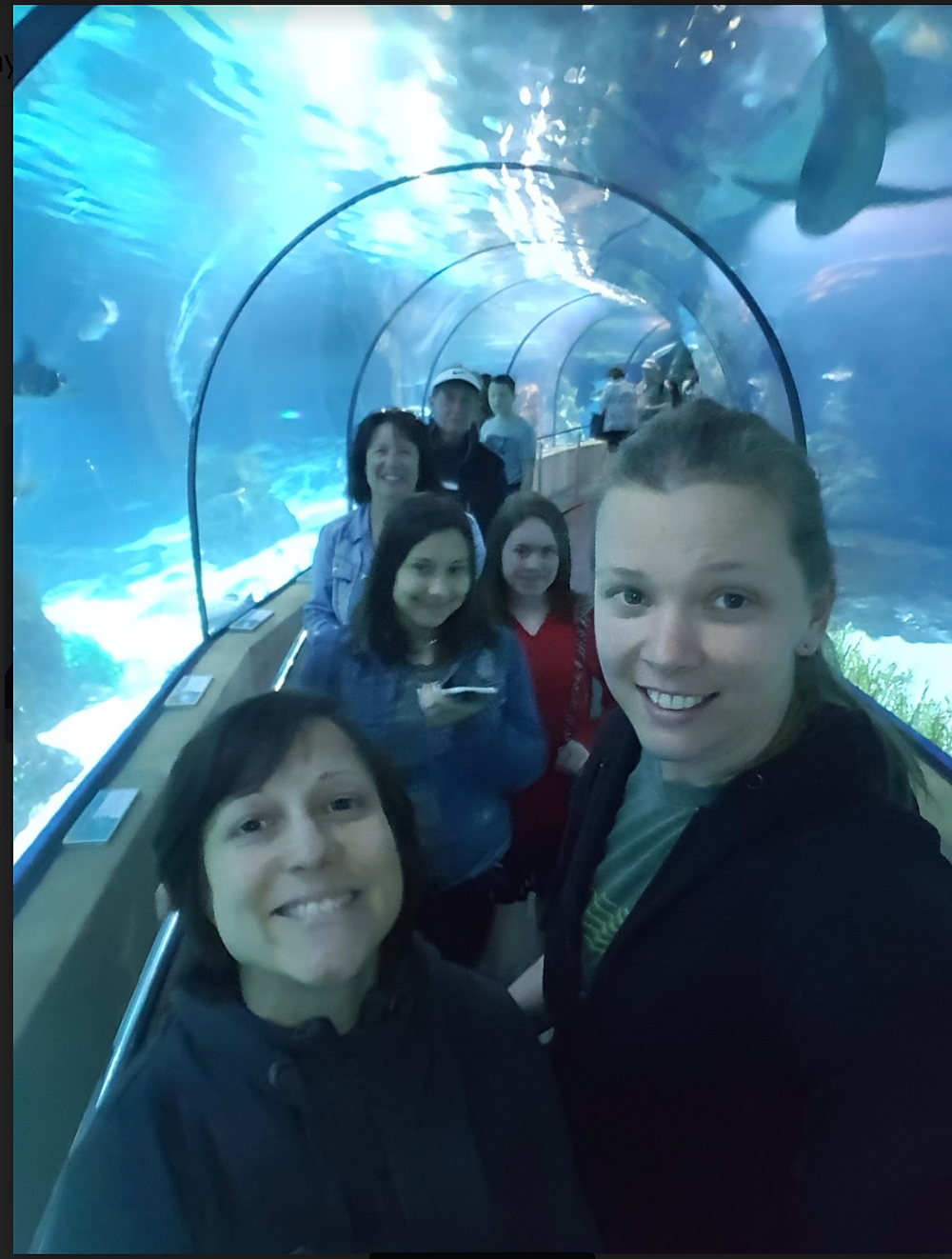 Jen and family at Aquarium Barcelona, March 2018
