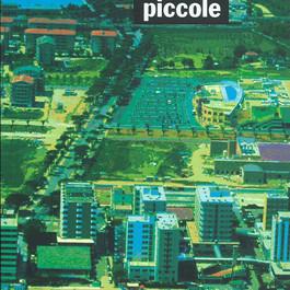 """Libro: """"Metropoli piccole"""""""