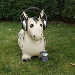Playlist, field recording