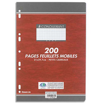FEUILLETS MOBILES PERFORES 210x297 200 PAGES 90G SEYES