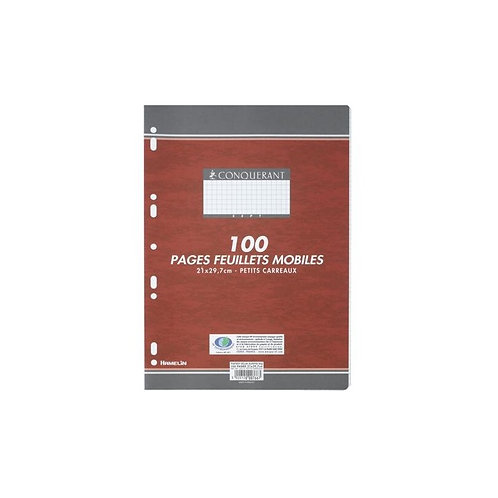 FEUILLETS MOBILES PERFORES 210x297 100 PAGES 80G Q5x5