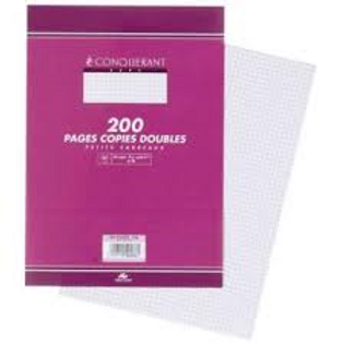 FEUILLES DOUBLES PERFOREES 210x297 200 PAGES 70G Q5x5