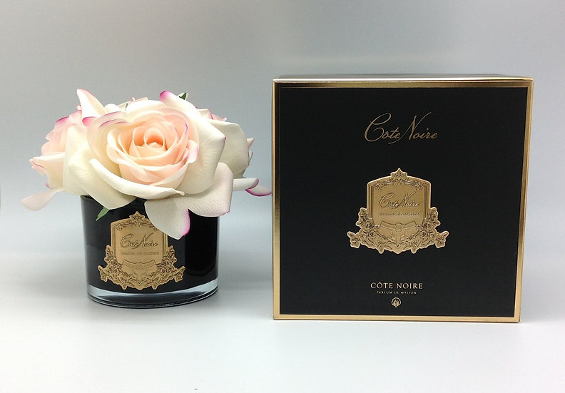 5 pink blush roses in black & gold - Cote Noire