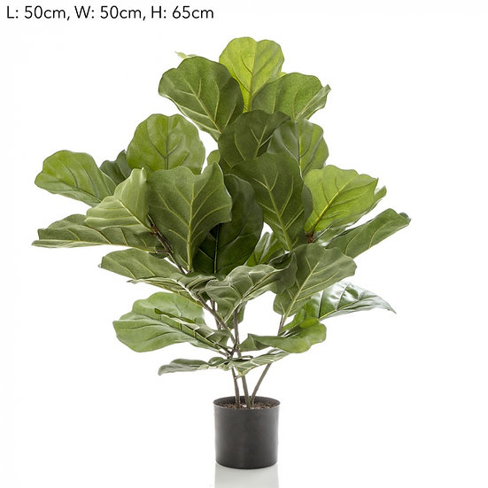 Artificial Fiddle Leaf Tree 65cm
