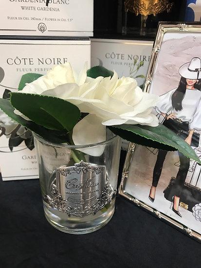 Cote Noir - Double Gardenia - Silver / Clear