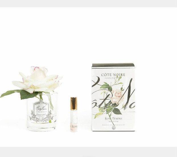 Single rose blush by Cote Noire