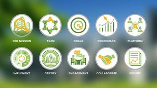 Verdani's 10 Steps to a Green Portfolio