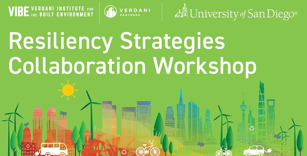 Resiliency Strategies with Verdani Partners