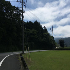 IMG_2911.JPG.jpg