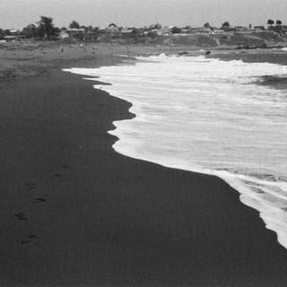 Shore's Silhouette