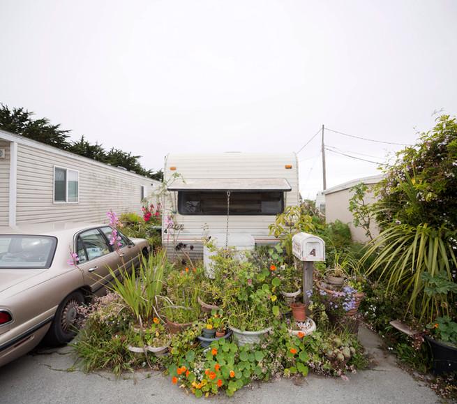 Djerassi Resident Artists Program, California