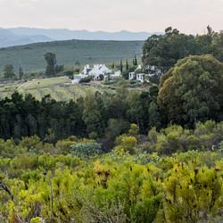 Galenia Estate Guest House