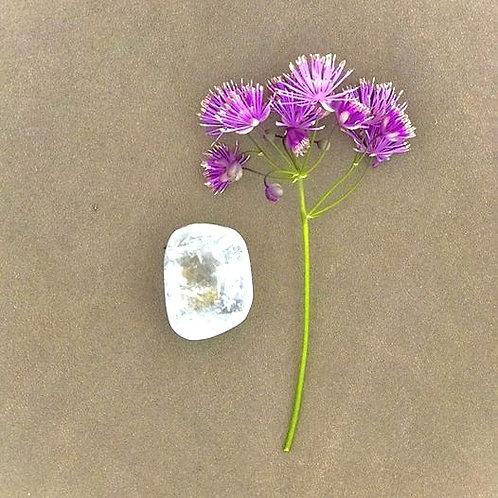 vit kalcit, kristall, enlightenment, kristall för andligt växande