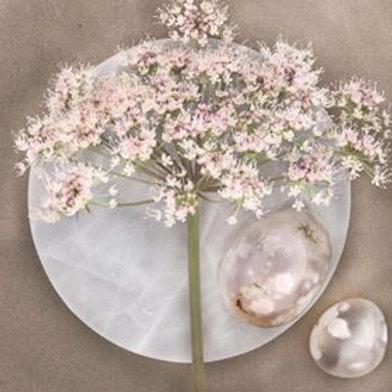 Kristallen blomsteragat vill öppna upp ett flöde inom dig där du kan skapa i överflöd. Låt hjärtat blomstra. House of Indra