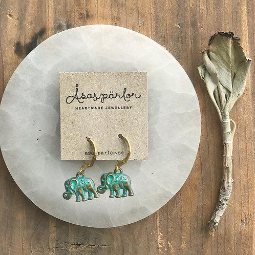 Elefant, örhänge