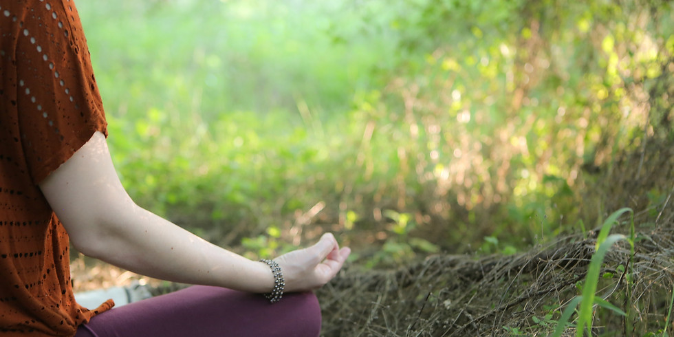 Ayurveda for Yoga Practitioners and Teachers