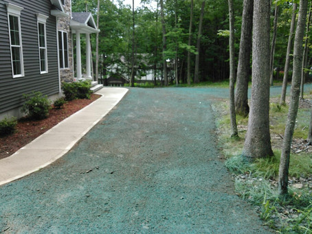 New Hydroseeding and Lawn Landscape Drainage System.