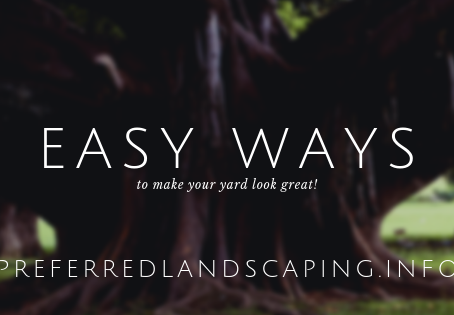 Easy ways make your yard look great!