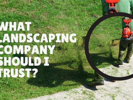 What landscaping company should I trust?