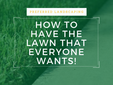 Lawn care is more than mowing!