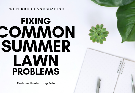 Fixing Common Summer Lawn Problems