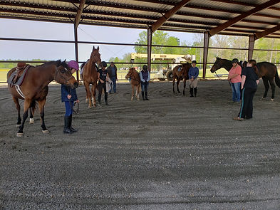 Whippoorwill Farm - Blessing the New Arena
