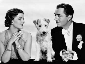 About The Thin Man