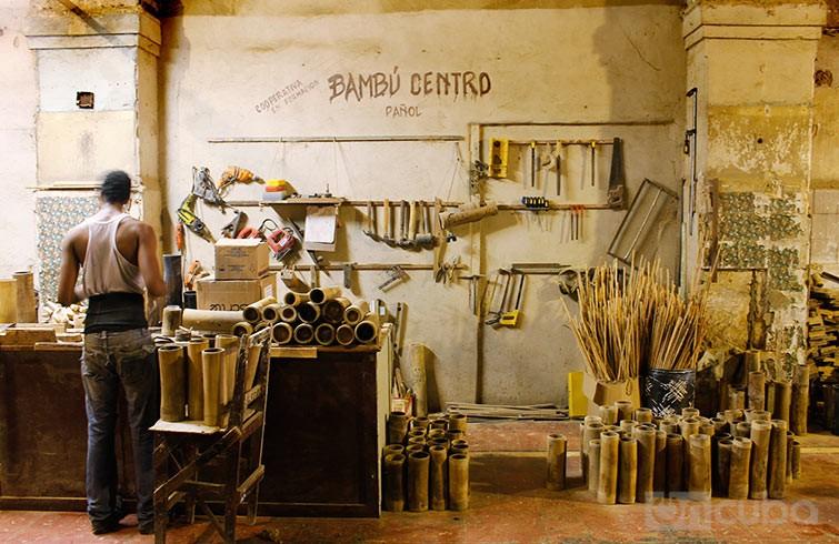 AAA_Bambus_Centro_Havanna