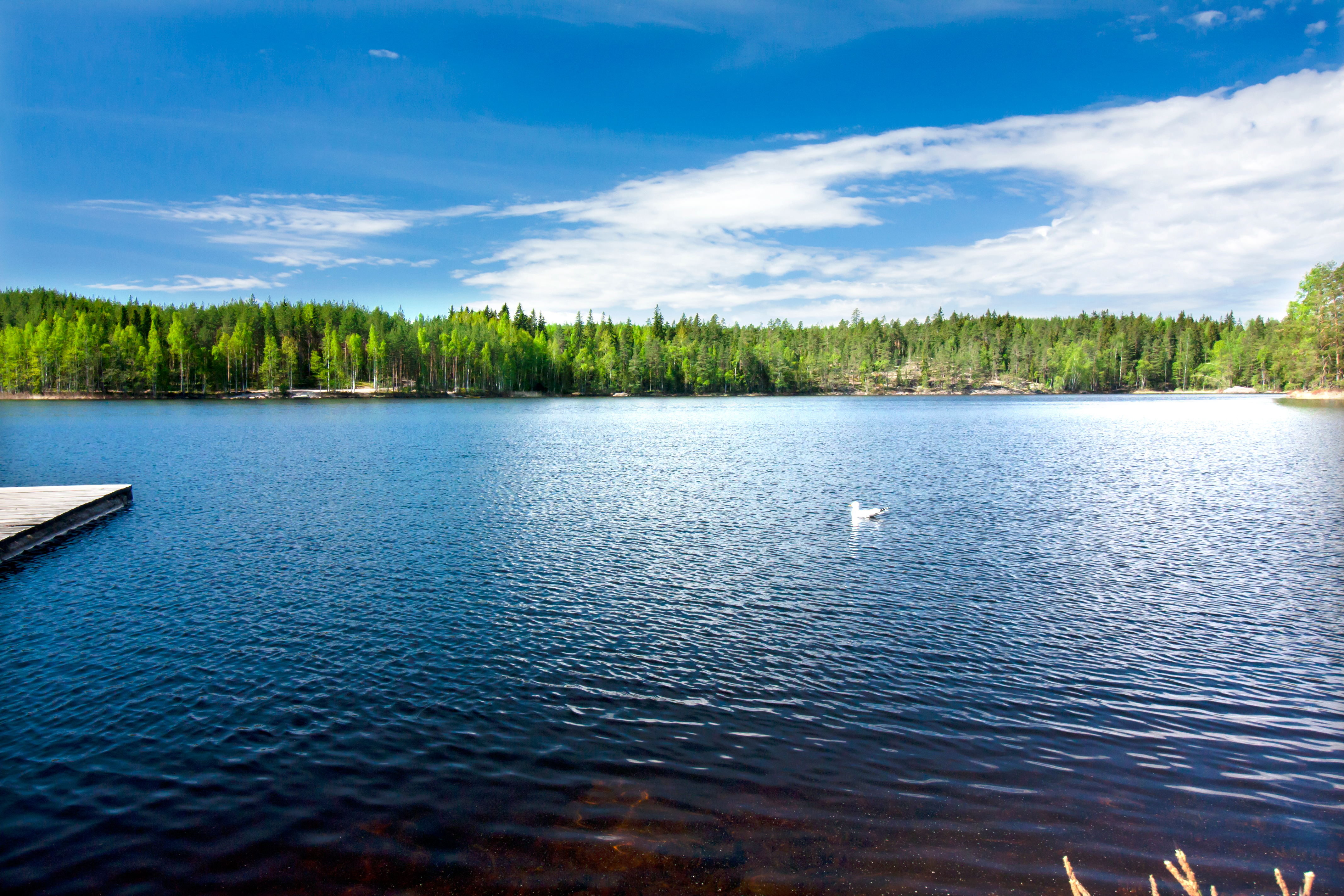 Beautiful lake in the national park Repo