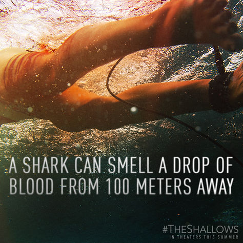 1467848264-Sony_TheShallows_Drop_Of_Bloo
