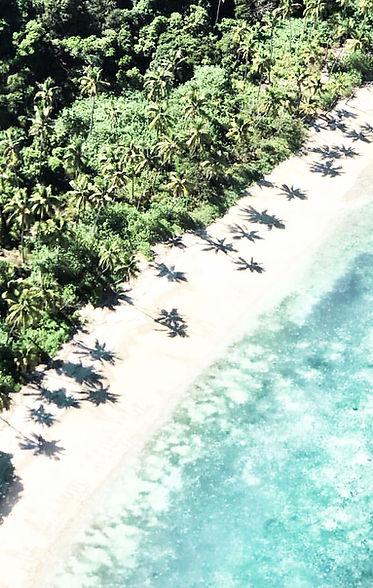 Fiji Aerial Image