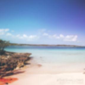 1467847481-Sony_TheShallows_Serene_Beach