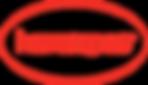havaianas-logo-18C5CE1091-seeklogo.com.p