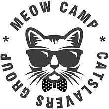 meowcamp.png