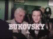 BukovskyAirport.jpg
