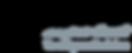 logo superlock.png