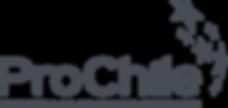 logo-PC-gris png.png